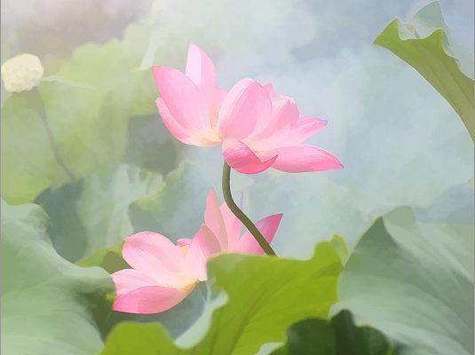 No Mud, No Lotus: Growing into our fullness
